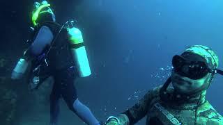 Freediving Two Harbors - Catalina Island
