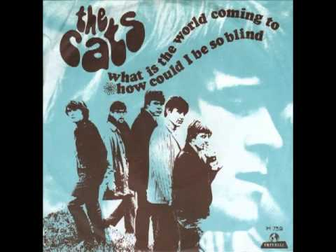 The Cats - What Is The World Coming To