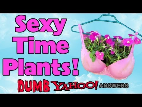 Dumb Yahoo Answers - Sexy Time Plants