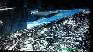 Skyrim how to get under whiterun and GOLD FARM!!