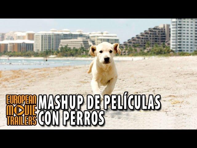 """""""El mejor amigo del hombre"""" Mashup de películas con perros"""