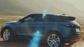New Range Rover Evoque - A Dog's Dream