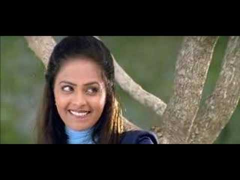 Minnalai Pidithu video