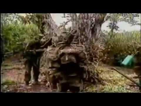 Fuerza Armada de El Salvador 1980-1992
