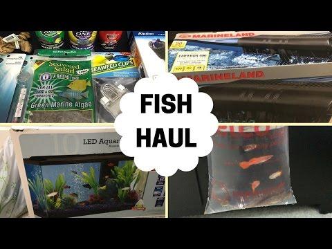 PETCO AND WALMART FISH HAUL