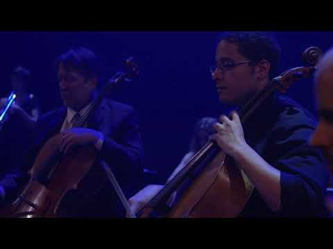 Portland Cello Project perform Radiohead's Paranoid Android