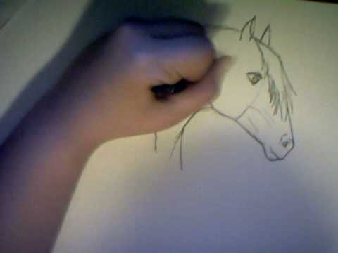 Tutorial come disegnare un cavallo parte 1 draw a horse for Disegni di cavalli da stampare e colorare