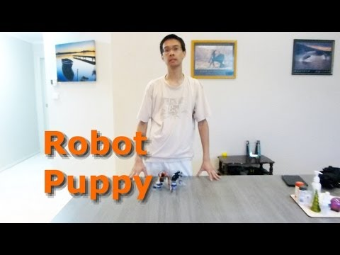 tekno robot dog instructions