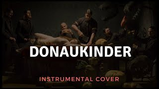 Watch Rammstein Donaukinder video