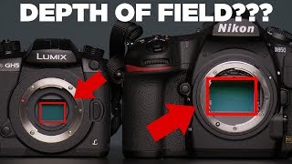 No, Larger Sensors Do Not Produce Shallower Depth of Field