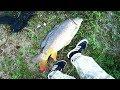 Рыбалка на секретном водоеме. Поймали монстра.