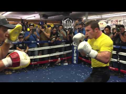 Canelo Alvarez: 10 Years In Boxing