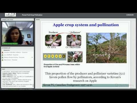 NSERC-CANPOLIN Pome Fruit Crop Pollination Webinar 25 March 2014