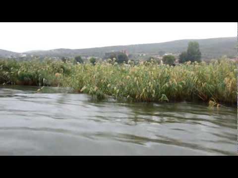 vozenje so camec po dojransko ezero na losho vreme.