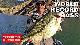 World Record Bass