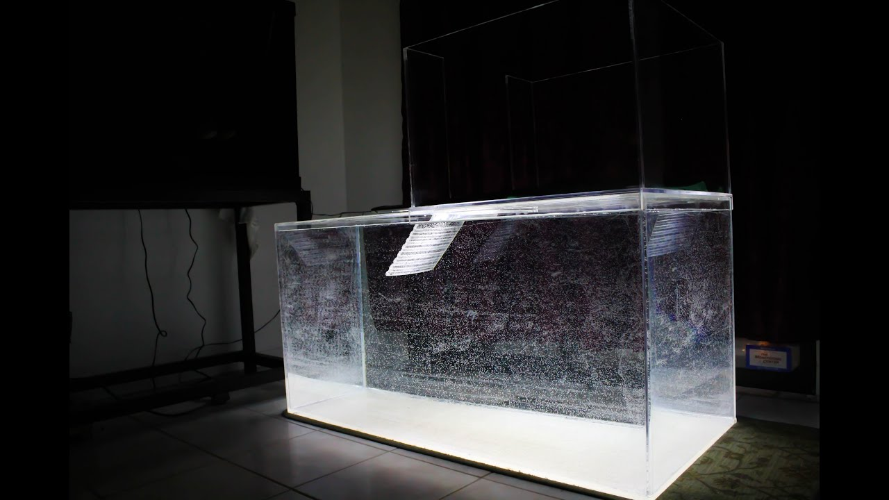 120 gallon acrylic aquarium and 40 gallon turtle topper for Acrylic vs glass fish tank