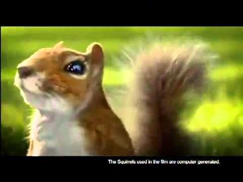 Youtube   Nestle Kit Kat Squirrel Commercial India Aug 2010 2 video