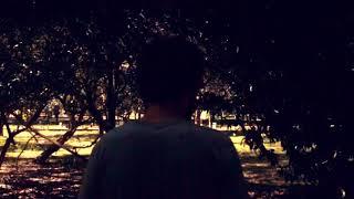 download musica Lupe de Lupe - Terra