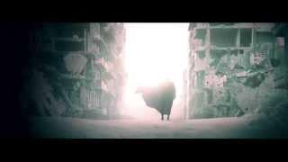 Batman v Superman - Dawn of Justice - Trailer