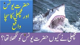 Hazrat Younas A.S aur Machli ka Sacha Waqiya.Islamic information, Fazilat,  Urdu 2016
