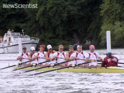 Slimy fashion, rowing forces and musical genes