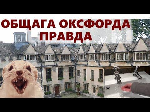 Ужасы общежития Оксфорда / Вся правда про общагу Оксфордского Университета