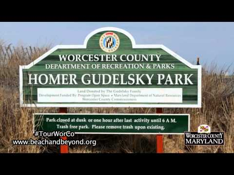 """Dog Walking"" - For Worcester County Tourism"