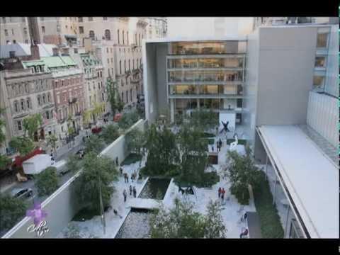 Más Cultura - Museo de Arte Moderno de Nueva York - TVMÁS