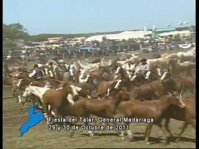 Entrevero de Tropillas  en la Fiesta del Talar de Gral. Madariaga 2011