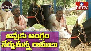 Village Ramulu Teaching English To Cow | Swami Nityananda | Jordar News  | hmtv