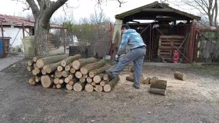 Cutting some firewood