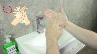 How to wash your hands correctly: World Hand Hygiene Day 2016