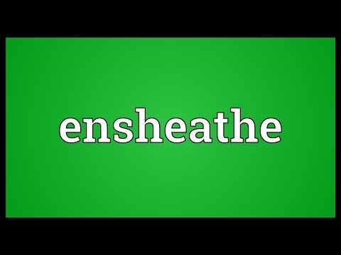 Header of ensheathe
