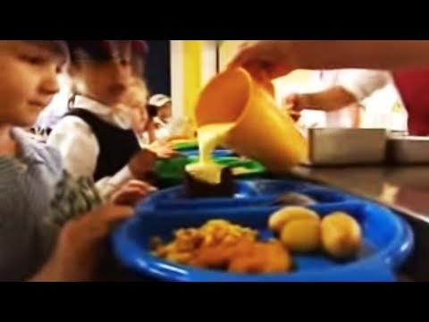 Does eating fish make children smarter? BBC science