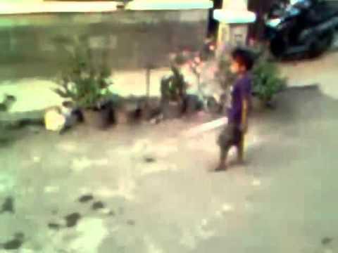 Video lucu Anak kecil VS ayam jago