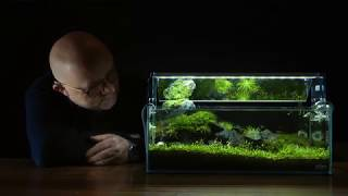 Nano Aquascape Tutorial - Scree by James Findley - How-To Documentary