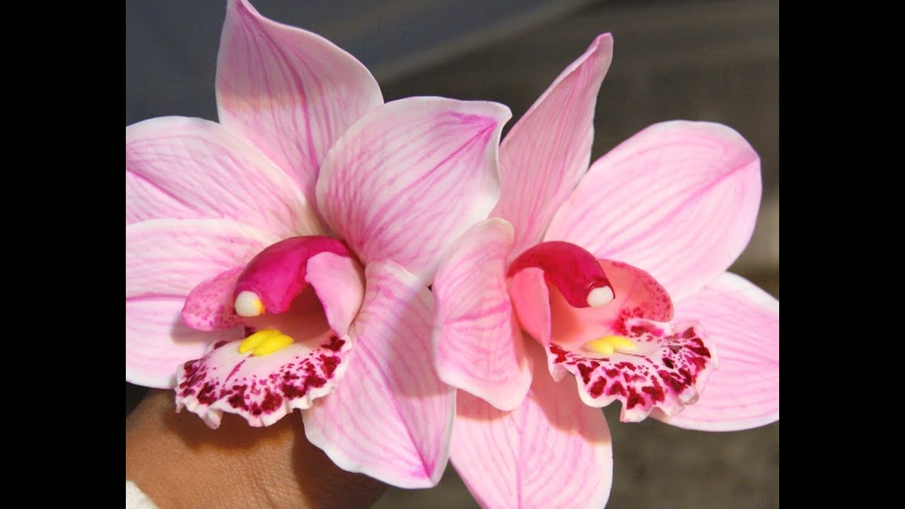Cold Porcelain Clay Orchid Flowers