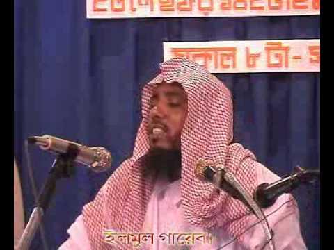 Bangla Waz Mahfil New Elmul Gayeb Sheikh Hafez Sanaulllah (ra) video