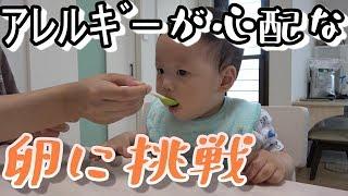 【離乳食レシピ中期】アレルギー反応が心配な初めての卵の進め方【生後8か月の赤ちゃん】
