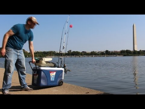 Catfishing from the bank - Fishing from shore - Fishing from bank