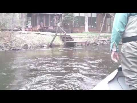 Michigan Steelhead Fly fishing