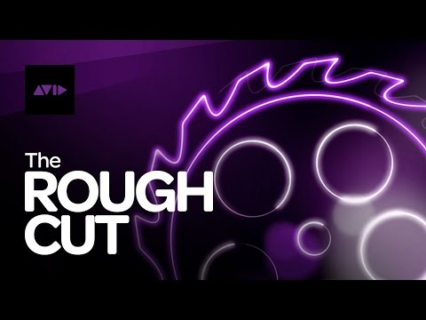 Doug Liman ‒ The Rough Cut