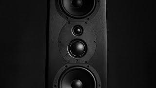 Review! The Monoprice 'Monolith' THX 365T bookshelf loudspeaker!