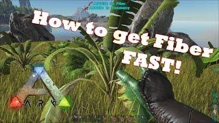 Ark: Survival Evolved | How To Get Fiber FAST!!