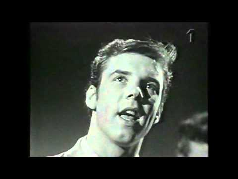 Marty Wilde - Teenager in Love