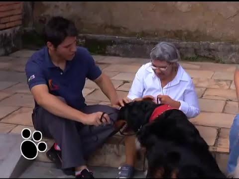 Programa Este bicho é o bicho - Terapias Assistidas por Animais