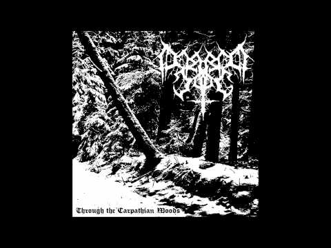 Silence In The Woods - The Curse Of The Ancient Wolves