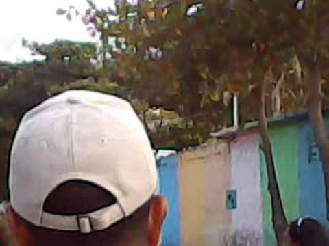 http://i.ytimg.com/vi/ZalpQ6FGI3c/0.jpg