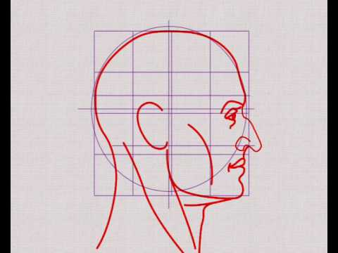 Nose Profile Typology