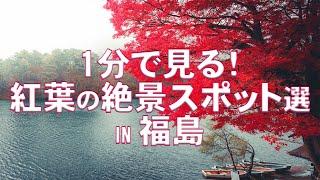 【紅葉】おすすめ紅葉スポット IN 福島【絶景】